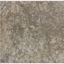 MS International Terre Noce 12 in. x 12 in. Glazed Porcelain Floor and Wall Tile (672 sq. ft. / pallet)-DISCONTINUED