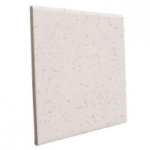 U.S. Ceramic Tile Bright Granite 6 in. x 6 in. Ceramic Surface Bullnose Wall Tile-DISCONTINUED
