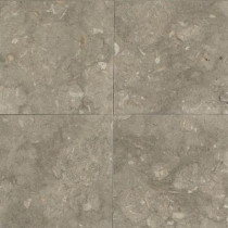 Daltile Caspian Shellstone 12 in. x 12 in. Polished Natural Stone Floor and Wall Tile (10 sq. ft. / case)