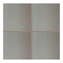 Daltile Quarry Ashen Flash 6 in. x 6 in. Ceramic Floor and Wall Tile (11 sq. ft. / case)