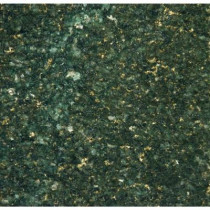 MS International Verde Ubatuba 18 in. x 18 in. Polished Granite Floor and Wall Tile (9 sq. ft. / case)