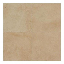 Daltile Monticito Brune 18 in. x 18 in. Porcelain Floor and Wall Tile (10.9 sq. ft. / case)
