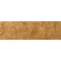 Emser 3 in. x 13 in. Seville Alameda Glazed Porcelain Single Bullnose -Each-DISCONTINUED