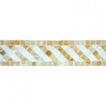 MS International Honey 2 in. x 8 in. Polished Onyx Listello Floor and Wall Tile (10 Pieces / case)